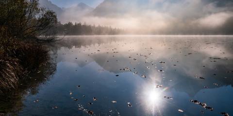 Morgennebel, Schwansee, Füssen, Kreis Ostallgäu, Bayern, Deutschland