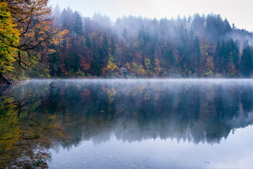 Nebel am Freibergsee, Allgäuer Alpen, Kreis Oberallgäu, Bayern, Deutschland