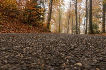 Strasse im Wald mit Nebel