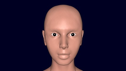 3d female character with skin on face. 3d render