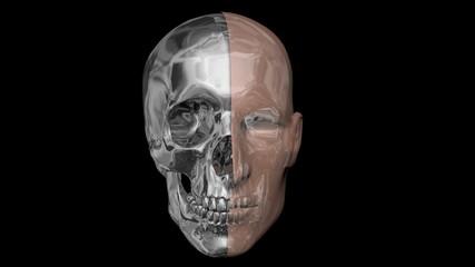 Human face half skin, half metal, skull ,robotic head. 3d render