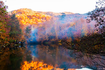 Yedigoller National Park, Autumn views. Foggy landscape. Bolu, Turkey..