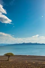 lake turkana, the permanent desert lake