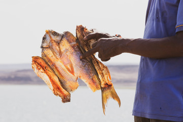 fisherman holding the dried fish from Lake Turkana