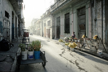 Havana Cubu at dawn. Typical residential street in Centro with parked cars and very little traffic.