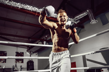 Boxer. Confident young boxer punching, training on the boxing ring
