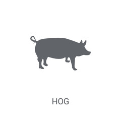 Hog icon. Trendy Hog logo concept on white background from animals collection