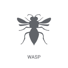 Wasp icon. Trendy Wasp logo concept on white background from animals collection