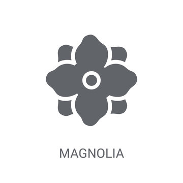 Magnolia icon. Trendy Magnolia logo concept on white background from Nature collection