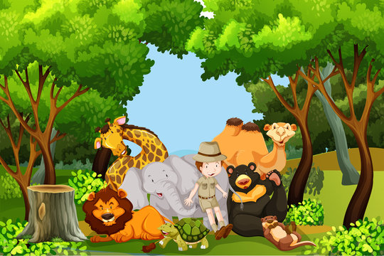 A zoo keeper with animals