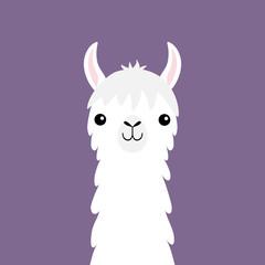 Llama alpaca animal face neck. Fluffy hair fur. Cute cartoon funny kawaii character. Childish baby collection. T-shirt, greeting card, poster template print. Flat design. Violet background.