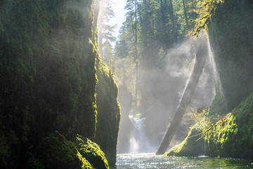 Columbia River Gorge - Hood River, Oregon. Sun shines on small waterfall and forest stream