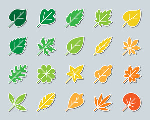 Organic Leaf patch sticker icons vector set