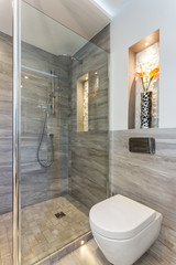 Modern bathroom shower room with toilet and amenities.