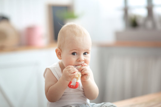 Baby first teeth gnaws fruit in safe device, food