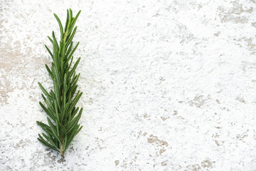 rosemary on isolated white background