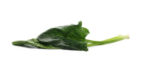 Fresh spinach leaf isolated on white background