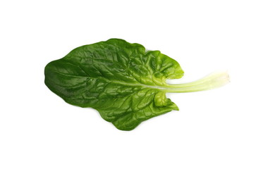 Fresh spinach leaf isolated on white background, top view