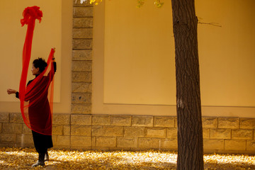 A woman poses for friends as they take pictures in an alley of autumn-coloured gingko trees in Beijing
