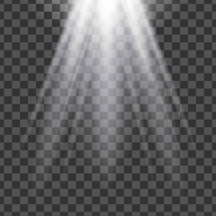 Vector isolated spotlight. Light effect.
