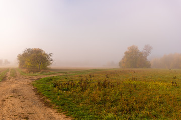 Color outdoor autumnal panoramic impressionistic nature image of a foggy idyllic rural countryside with golden foliage,trees,meadow,grass and a path fork,misty sunny fall day,vintage painting