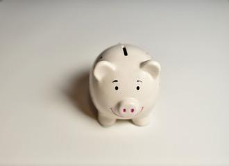Finance, saving money, white piggy bank on seamless white background.