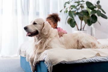 Adorable african american kid sitting on the bed behind her golden retriever