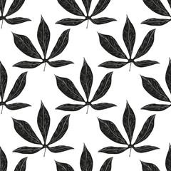 Cassava. Leaves. Background, wallpaper, texture, seamless. Black