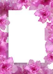 아름다운 봄 배경, 봄 백그라운드, 봄 꽃 프레임