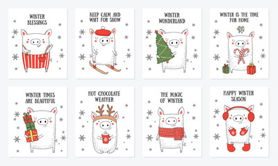Postcard collection. New 2019 Year posters with cute pig and winter slogan
