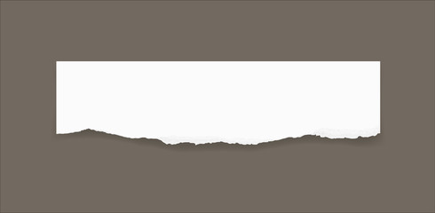 Torn paper edges for background. Ripped paper texture background with area for copy space. Vector.