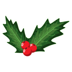 Holly berry leaves decorative element. Vector cartoon Christmas icon isolated on a white background.