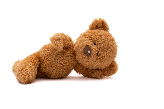 lying teddy bear isolated on white background