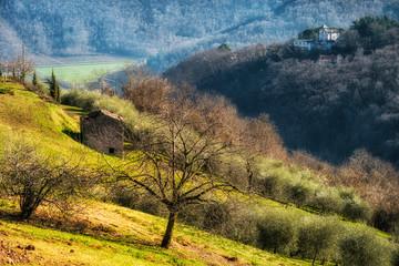 Paesaggio collinare in inverno con casolare abbandonato