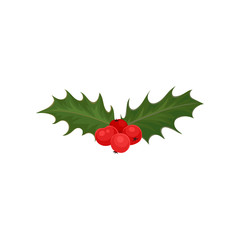 Christmas holly with red berries and green leaves. Nature theme. Flat vector for invitation or greeting card