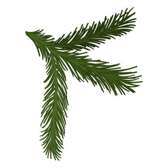 Green fluffy pine branch with short needles. Christmas symbol. Nature and botany theme. Flat vector icon