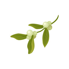 Mistletoe branch with small berries and leaves. Traditional Christmas decoration. Natural object. Flat vector icon