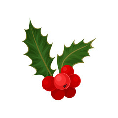 Holly with red berries and green leaves. Natural element. Traditional Christmas symbol. Flat vector icon