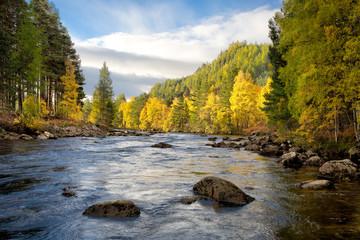 River dee in autumn, Cairngorms National Park, Scotland