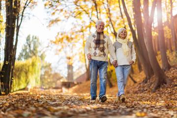 Senior couple in autumn park Fototapete