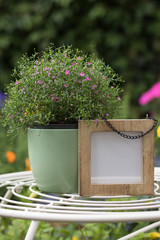 Vertical image: space for your words in wooden frame is near to pot with beautiful pink flower on a stylish table in a green blooming garden.
