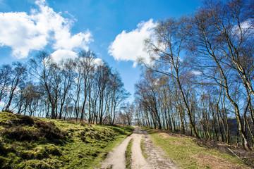 Moorland in Derbyshire,UK
