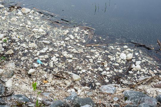 Plastic pollution. Polystyrene, styrofoam garbage on the shore.