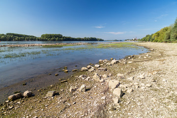 August 16 2018. Drought in Germany. Low water of the  Rhine river near Eltvile. Hesse. Germany.