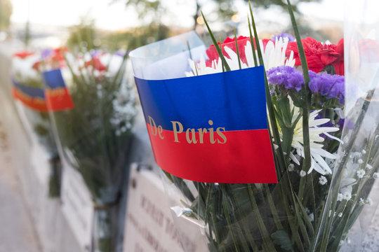 commémoration guerre nation première guerre mondiale france 1914-1918 14 18 1914 1918 hommage armistice fleur mort soldat poilu fleur pensée célébration paris