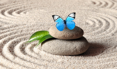 Obraz A blue vivid butterfly on a zen stone with circle patterns in the grain sand. - fototapety do salonu