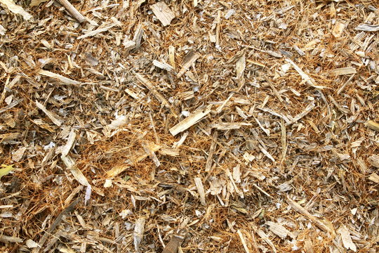 natural organic straw grass fiber mulch texture background