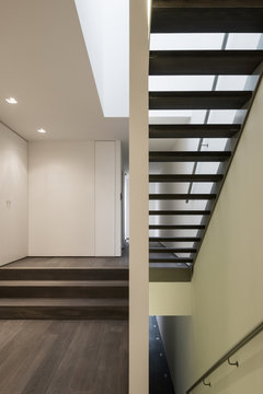 Staircase in contemporary house