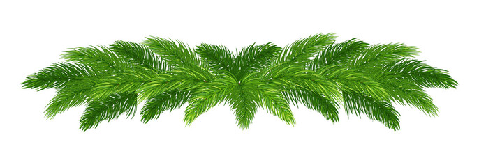 Wide Christmas decoration made of fir branches. New Year's border of Christmas tree branches.Isolated on white background without shadow.