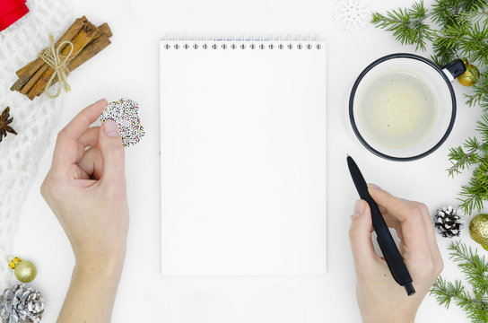 Goals plans dreams make to do list for new year christmas concept writing in notebook. Woman hand holding ink pen on notebook on background with fir tree branches New year winter holiday xmas flat lay